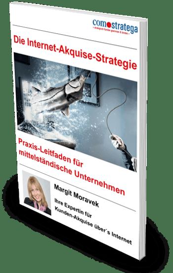 Die Internet-Akquise-Strategie E-Book